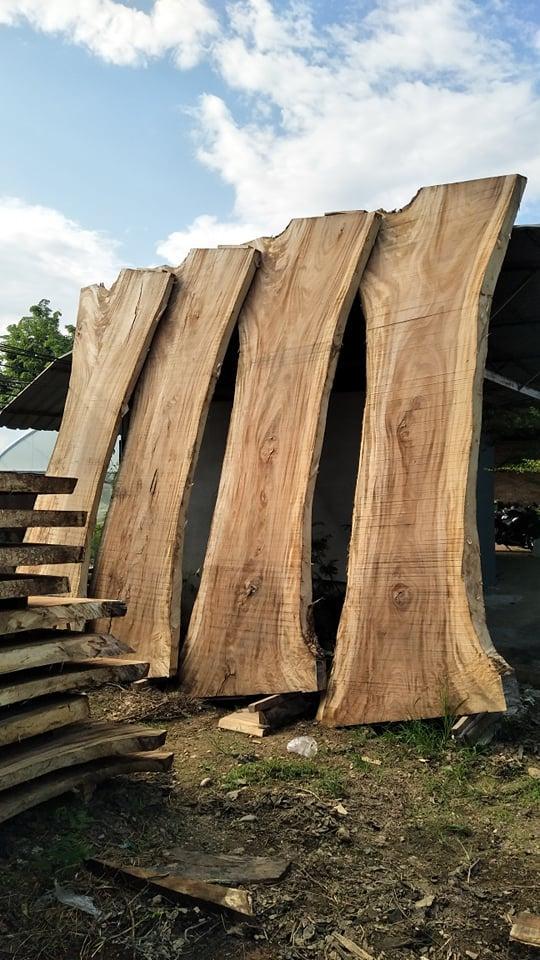 large pieces monkeypod wood slab